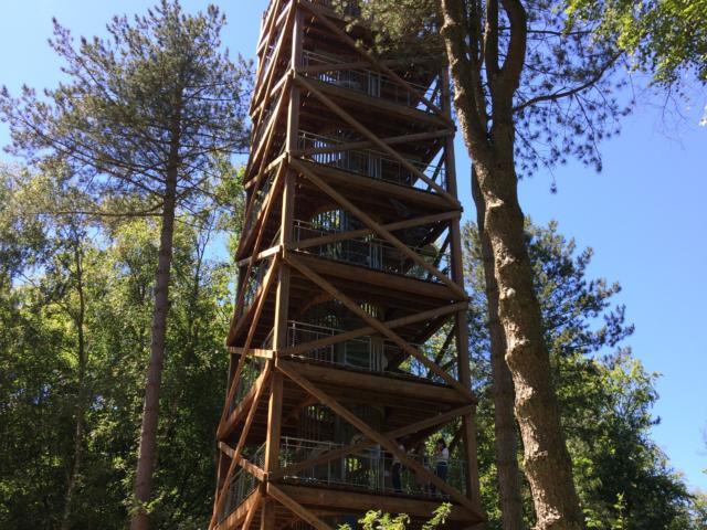 Tour D'observation Du Général Mangin < Forêt de Retz